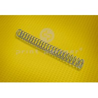 Compression spring for INTROMA 4C307
